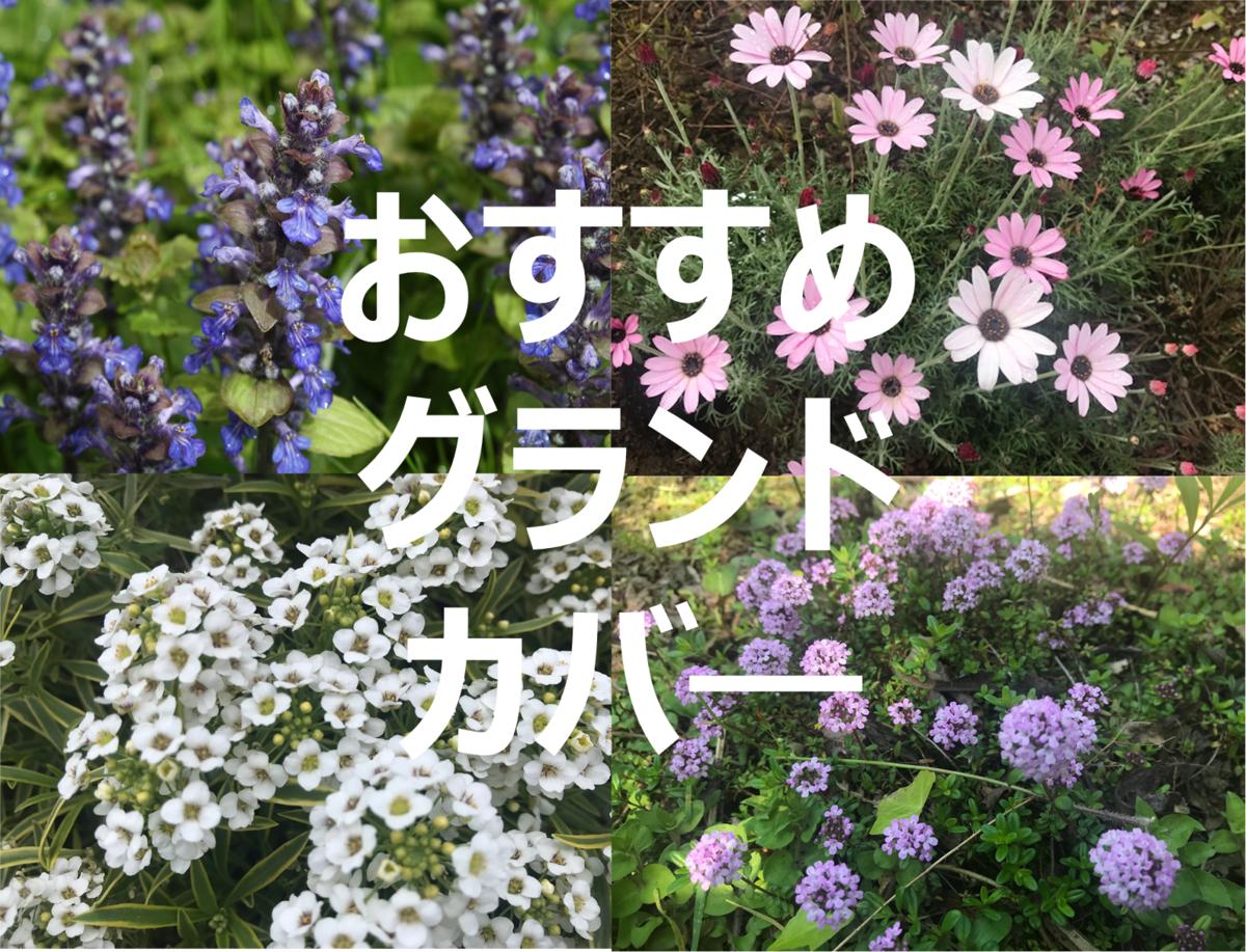 f:id:enoshima07:20200505215347p:plain