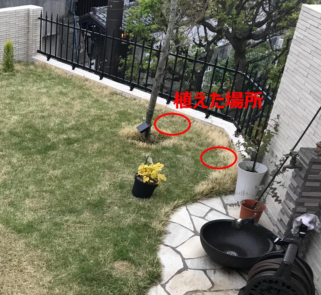 f:id:enoshima07:20200506144810p:plain
