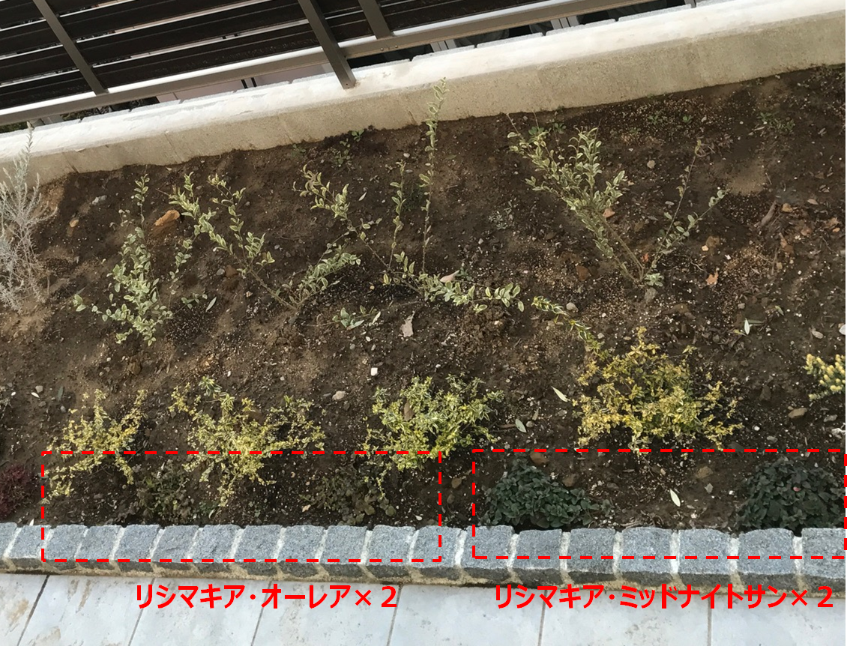 f:id:enoshima07:20200526194730p:plain