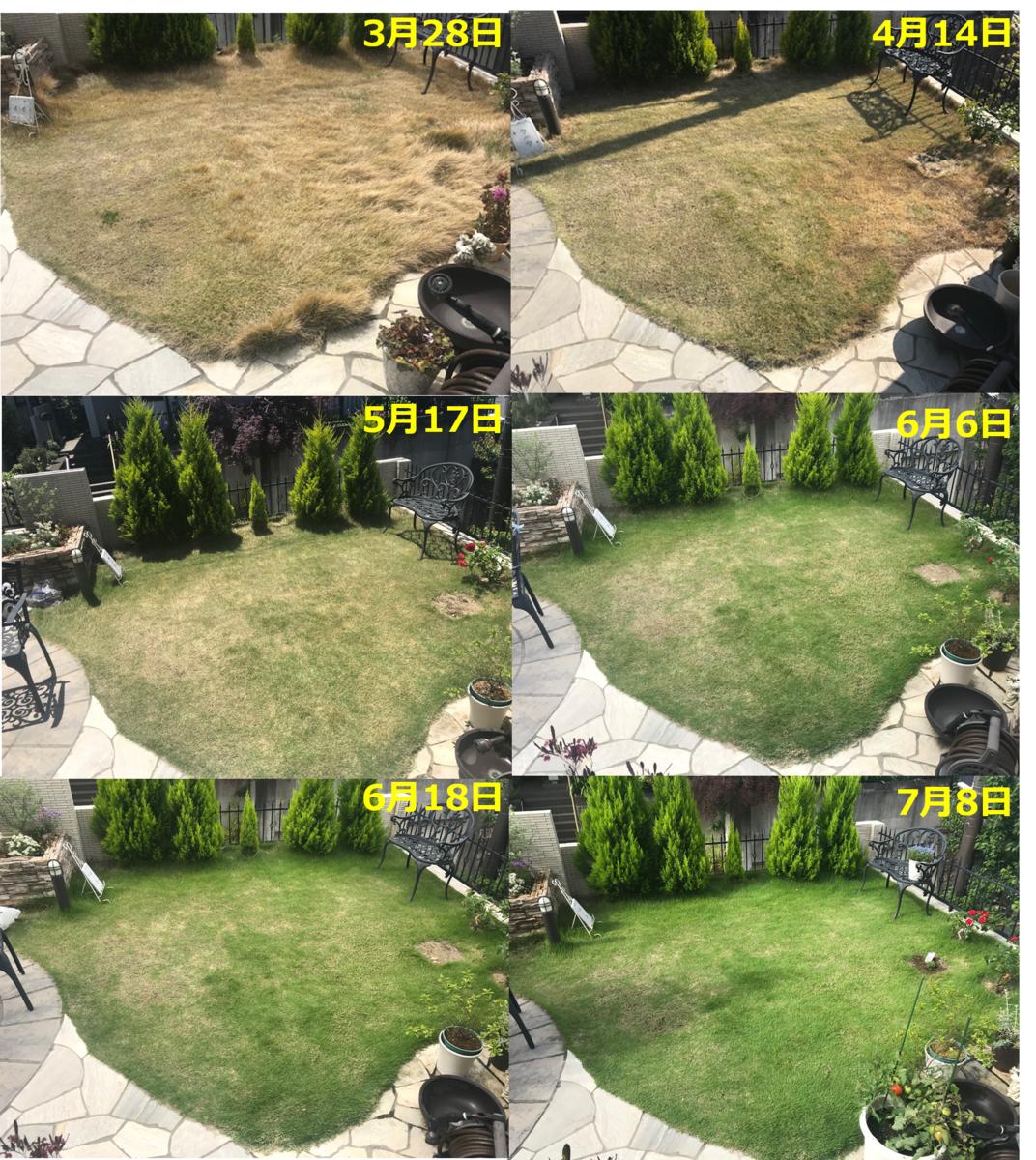 f:id:enoshima07:20200710074352p:plain