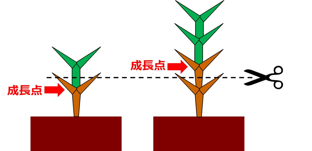 f:id:enoshima07:20200711141404p:plain