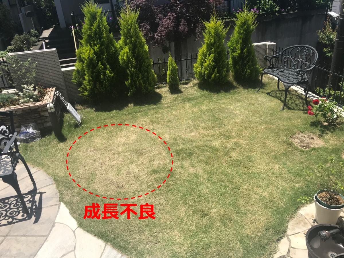 f:id:enoshima07:20200713221806p:plain