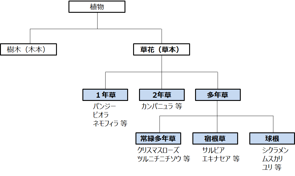 f:id:enoshima07:20200822065323p:plain