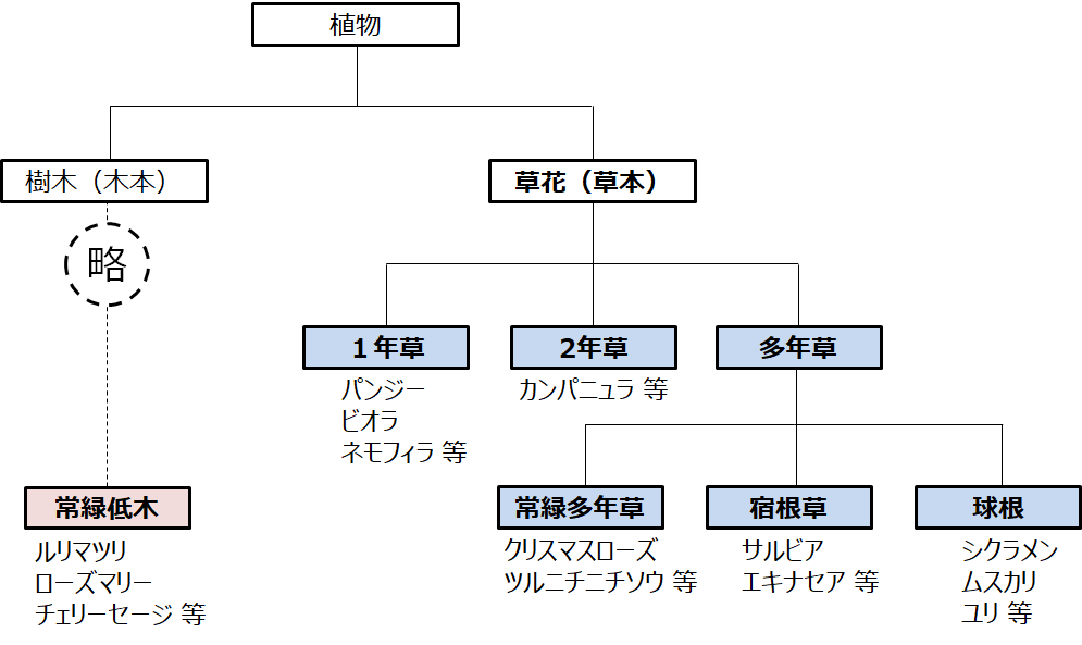 f:id:enoshima07:20200822065401p:plain