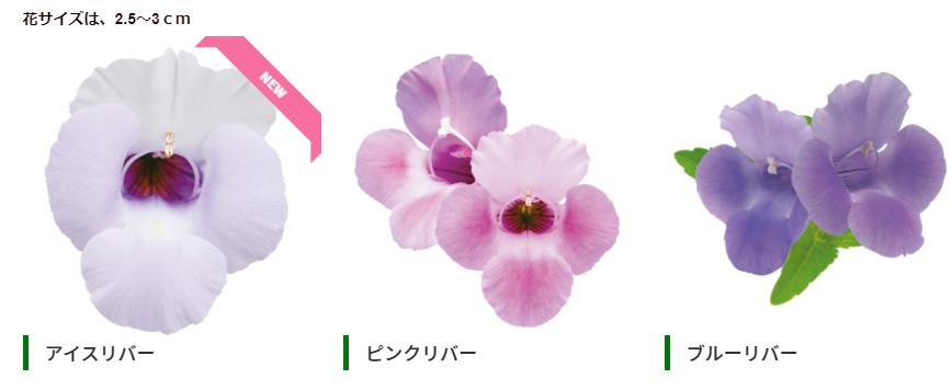 f:id:enoshima07:20210103173404p:plain