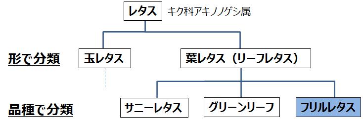 f:id:enoshima07:20210613142413p:plain
