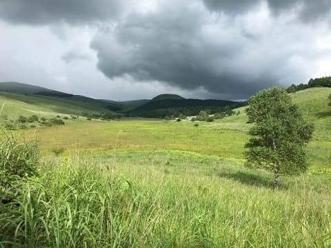積乱雲が連続して発生すると、集中豪雨に発展する