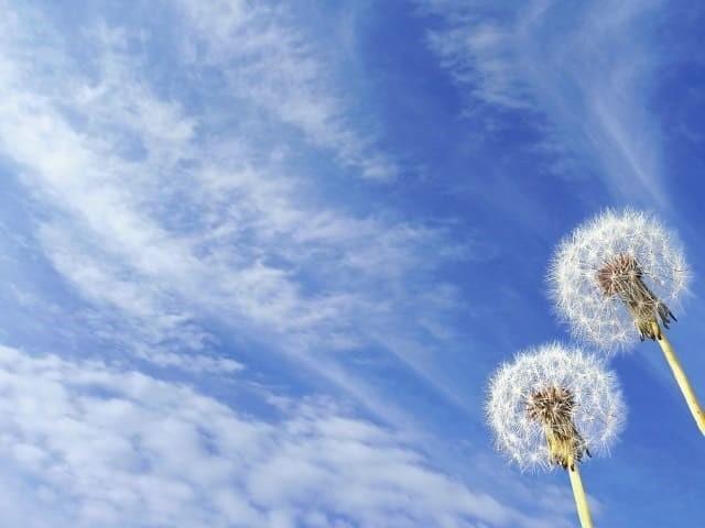 風は吹く理由は?大気の仕組みと気圧の差とは?