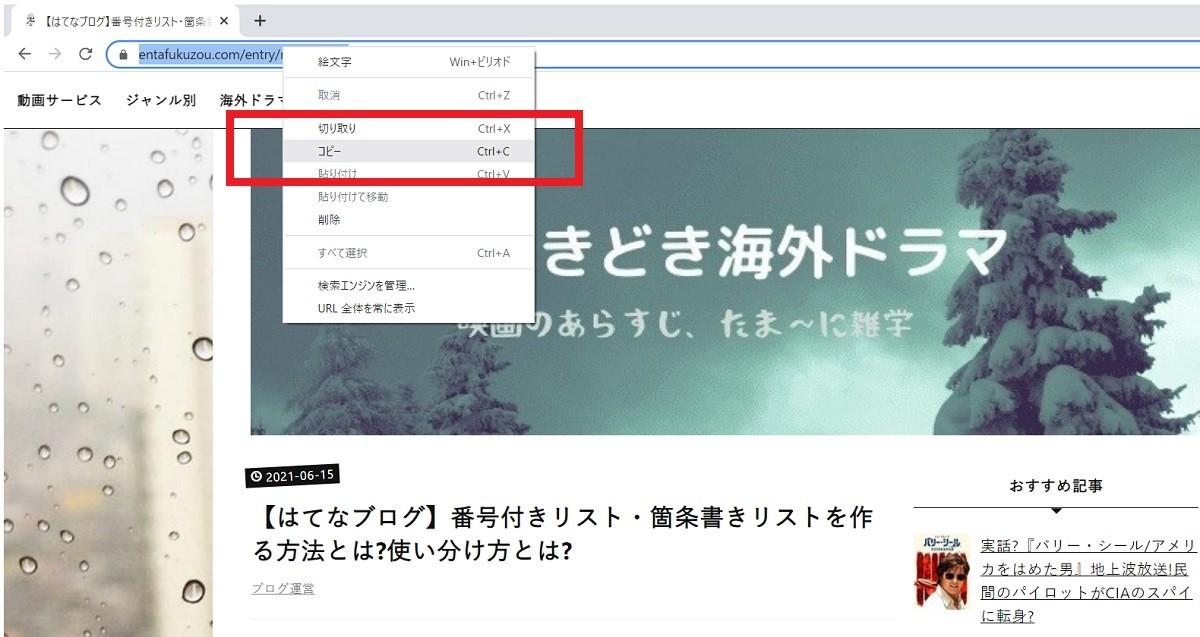 【はてなブログ】自分の記事が検索結果に出てこないのは,なぜ?site:コマンド