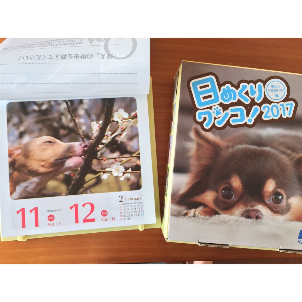 f:id:enzo_diary:20161018092851j:image