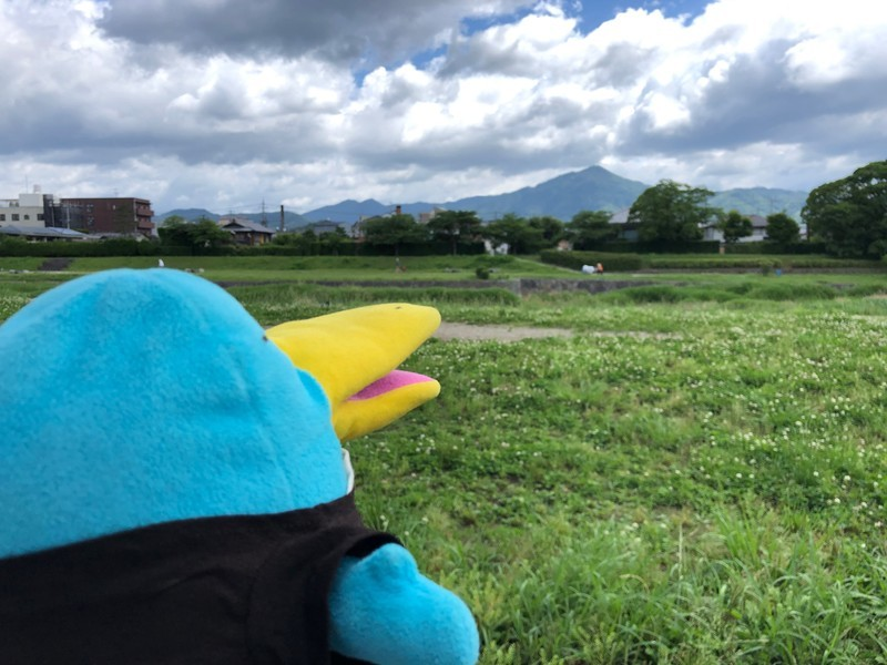f:id:eo64air:20190616105703j:plain