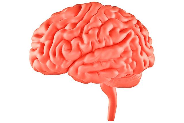 拒食症になると脳治療後すぐには回復しない、正常になるまで時間が必要