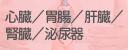 心臓/胃腸/肝臓/腎臓/泌尿器