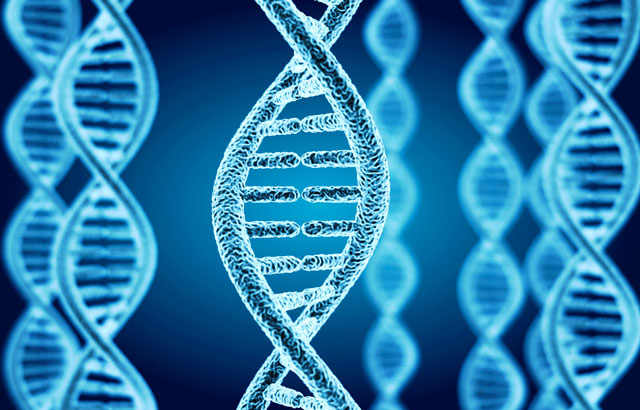 自閉症の一因となる遺伝子の突然変異を発見。自閉症の治療薬の開発に一歩前進