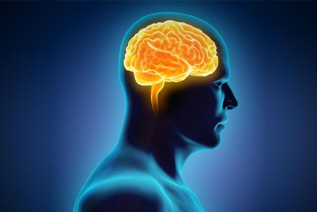 ダイエットを繰り返すと逆に体重が増える、脳が飢餓と見なして脂肪を貯める