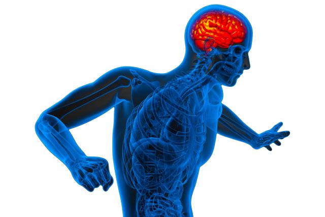 他人の動作を見るだけでも痛みを感じる「複合性局所疼痛症候群」(CRPS): メカニズムは、活性化される脳領域が異なるため