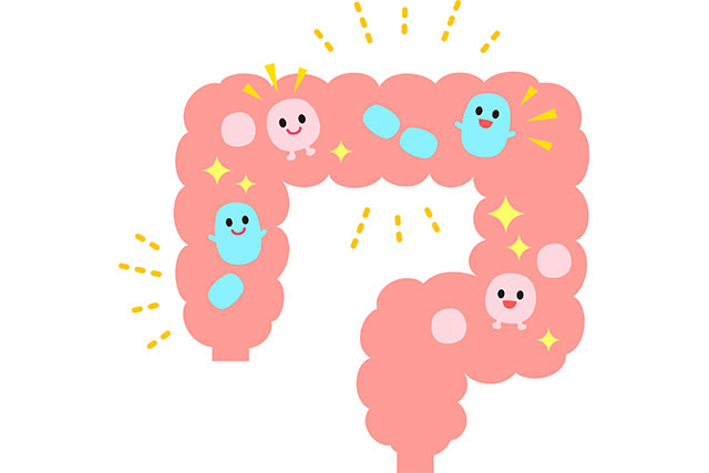 パーキンソン病に腸内細菌叢が関与の可能性