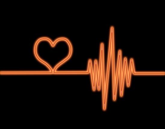 心臓の拍動の定常性にマクロファージが関わっている