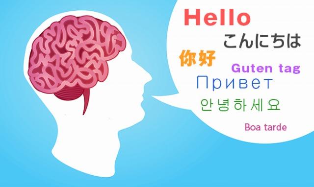 多言語習得者(バイリンガル)の人は脳の使い方が上手。脳の特定領域を使い作業ができる。
