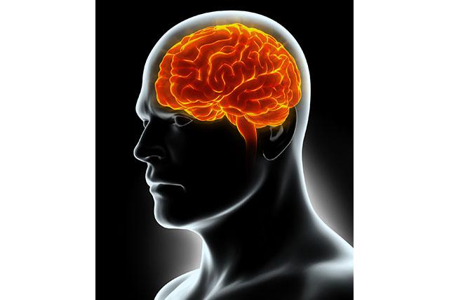 脳の白質が破壊される恐ろしい病気「アレクサンダー病」とは