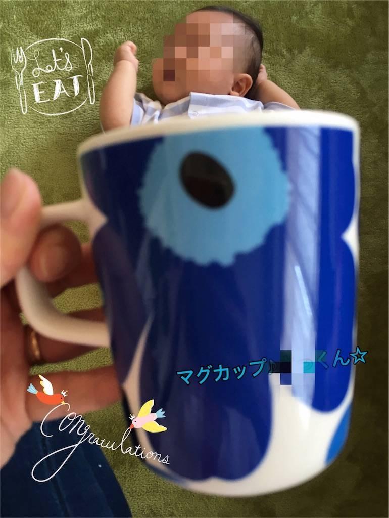 f:id:epinkflower:20180310060354j:image