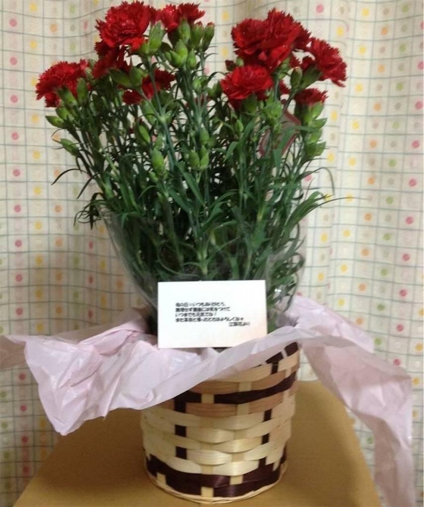f:id:epinkflower:20180507001201j:image