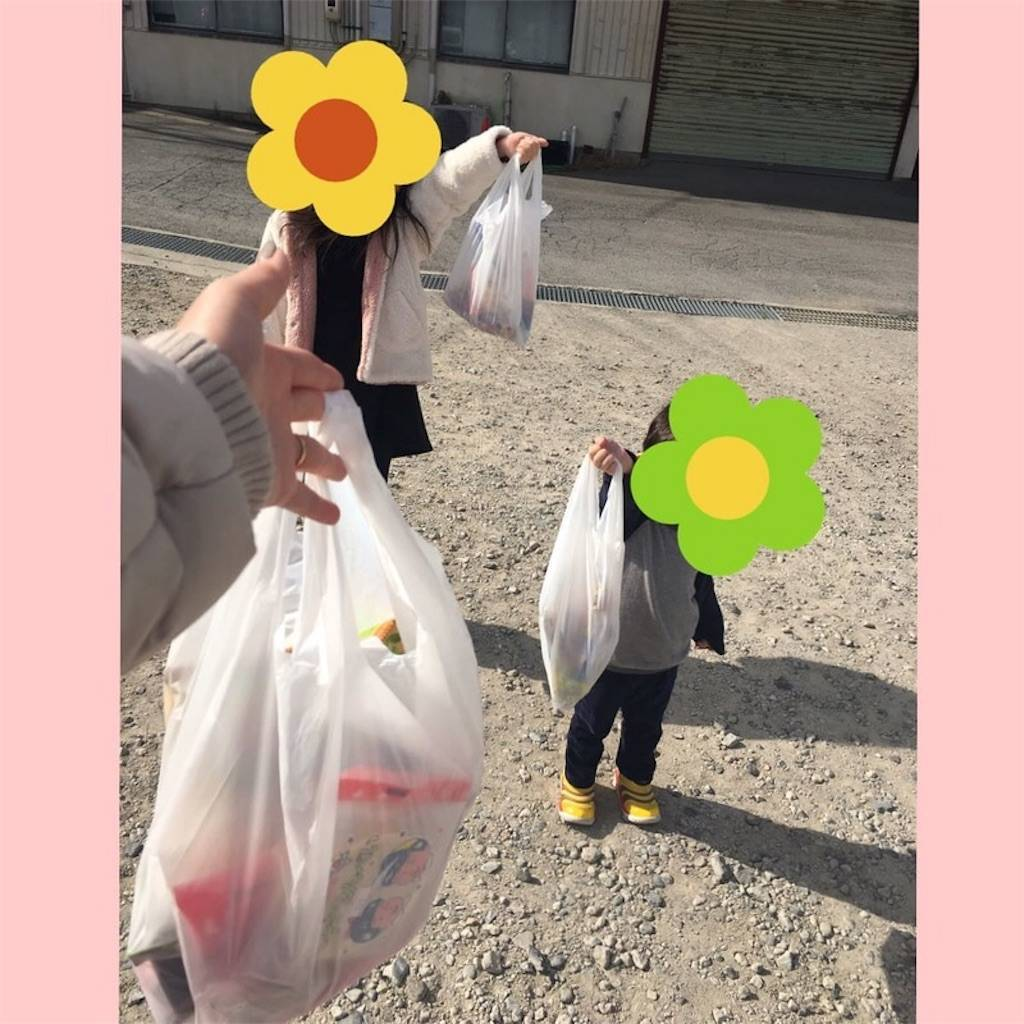 f:id:epinkflower:20190207213456j:image