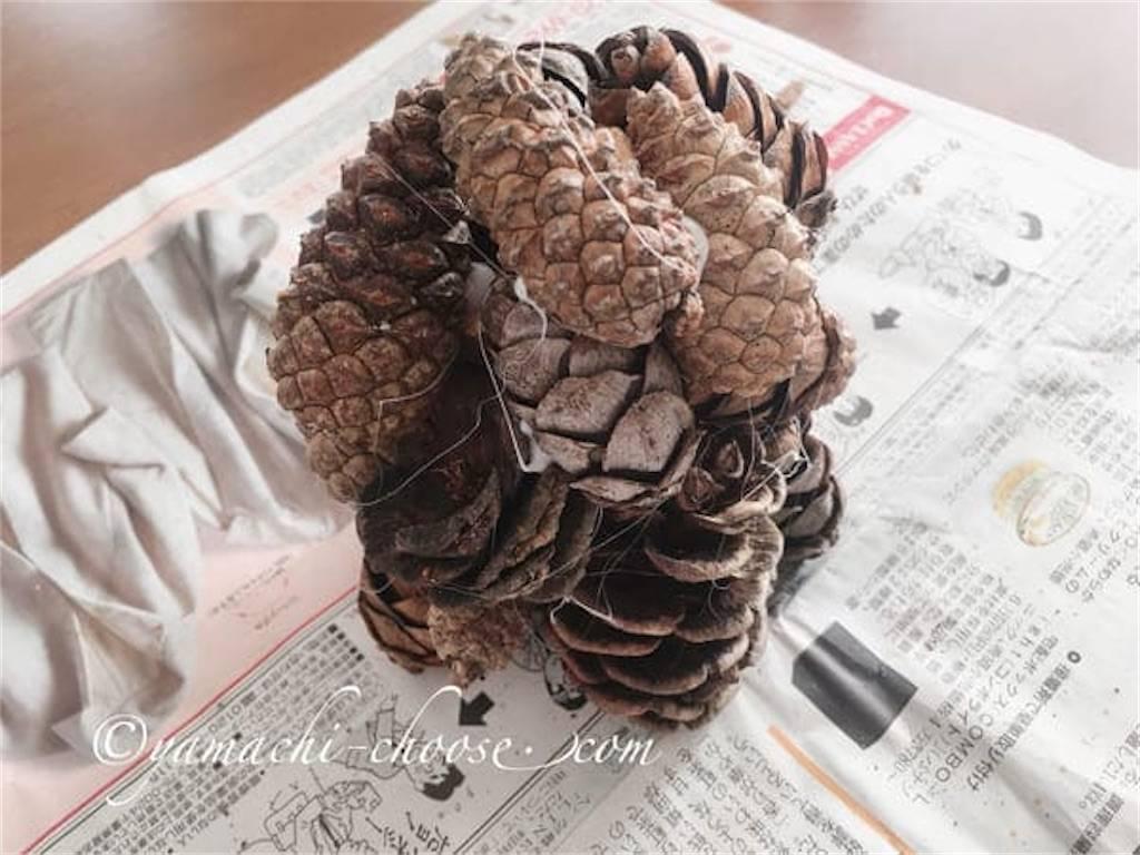 f:id:epinkflower:20191204211238j:image