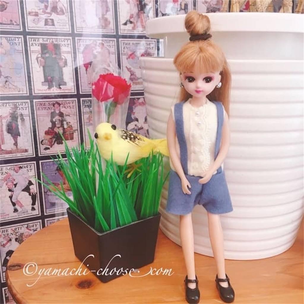 f:id:epinkflower:20200617140051j:plain