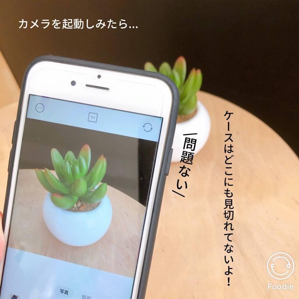 f:id:epinkflower:20210120123949j:plain
