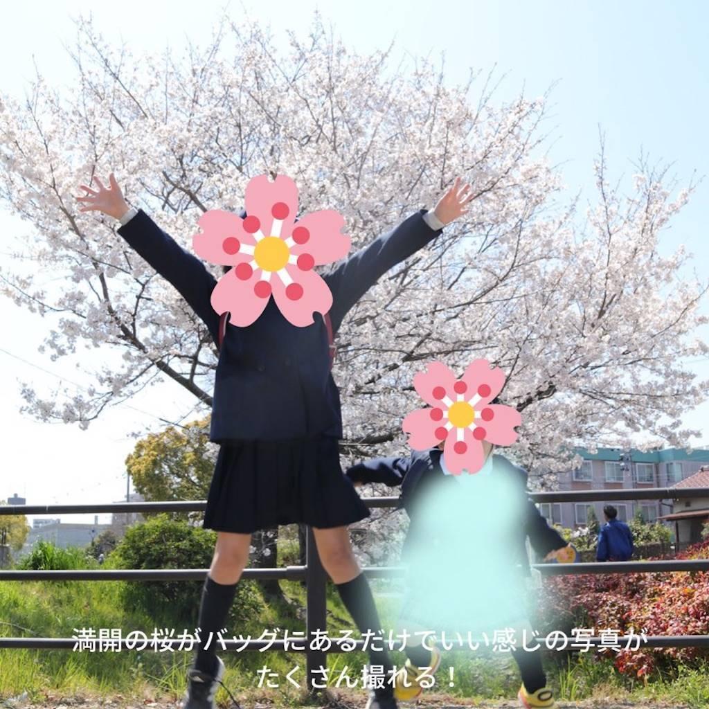 f:id:epinkflower:20210401130240j:plain
