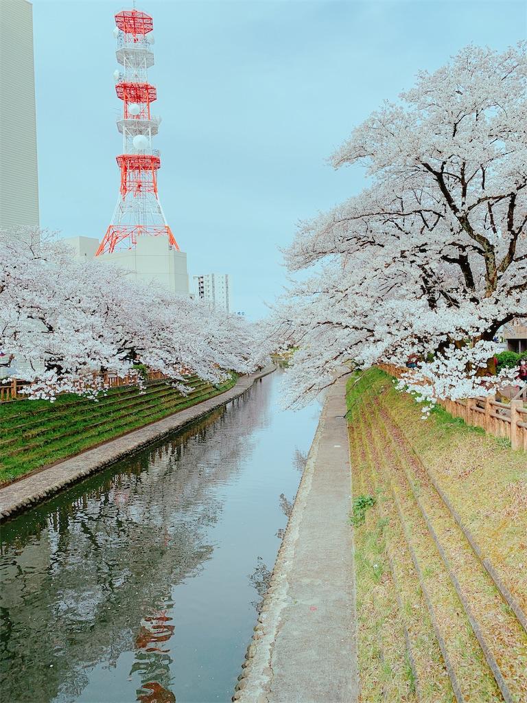 f:id:eri-imamachi:20190410144416j:image