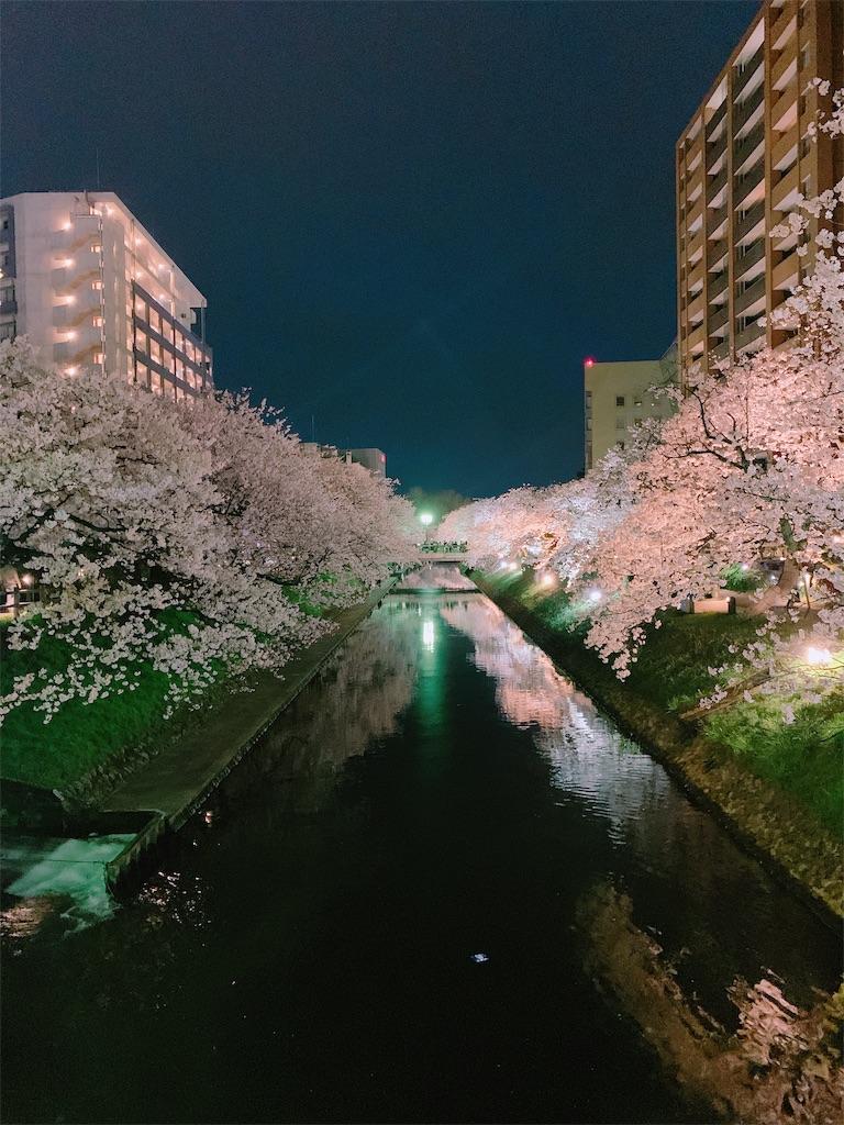f:id:eri-imamachi:20190410152533j:image