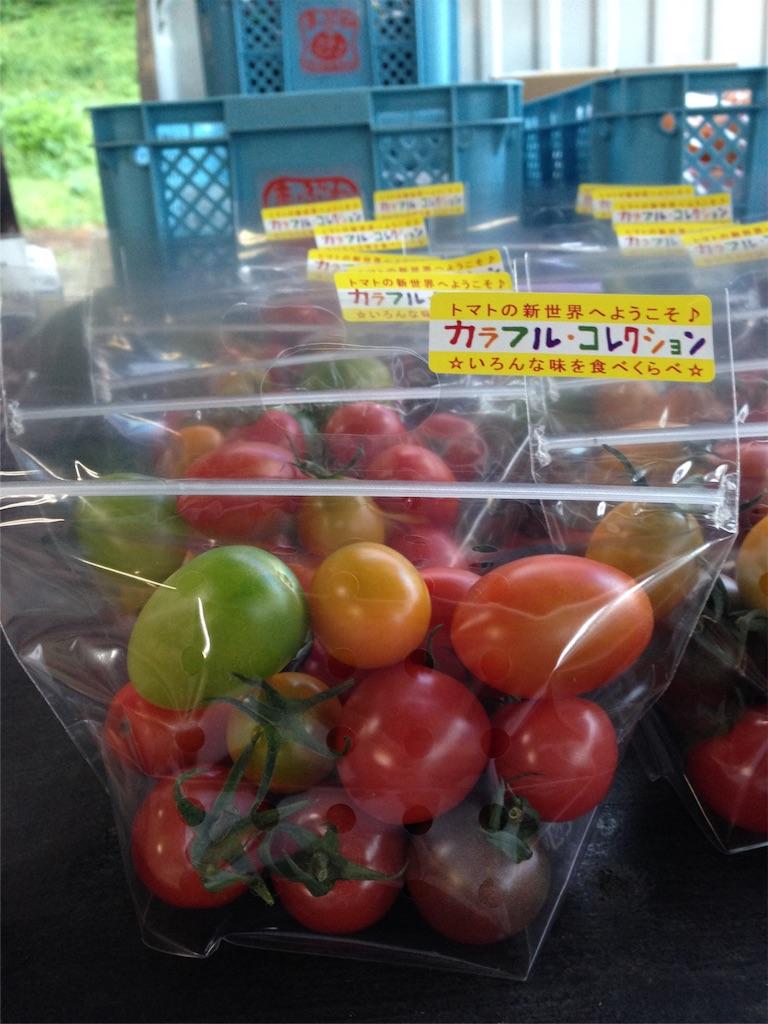 f:id:eri-tomato-oic2:20160812080628j:image