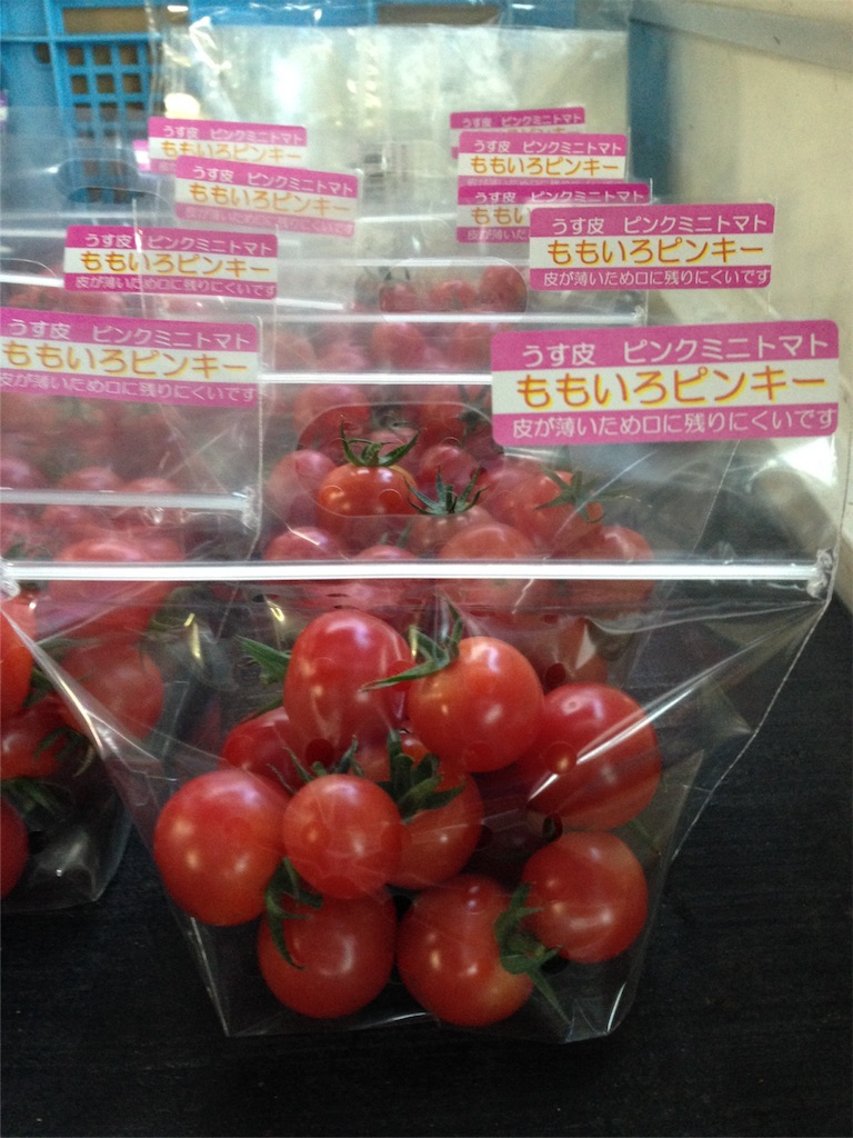 f:id:eri-tomato-oic2:20160812080814j:image