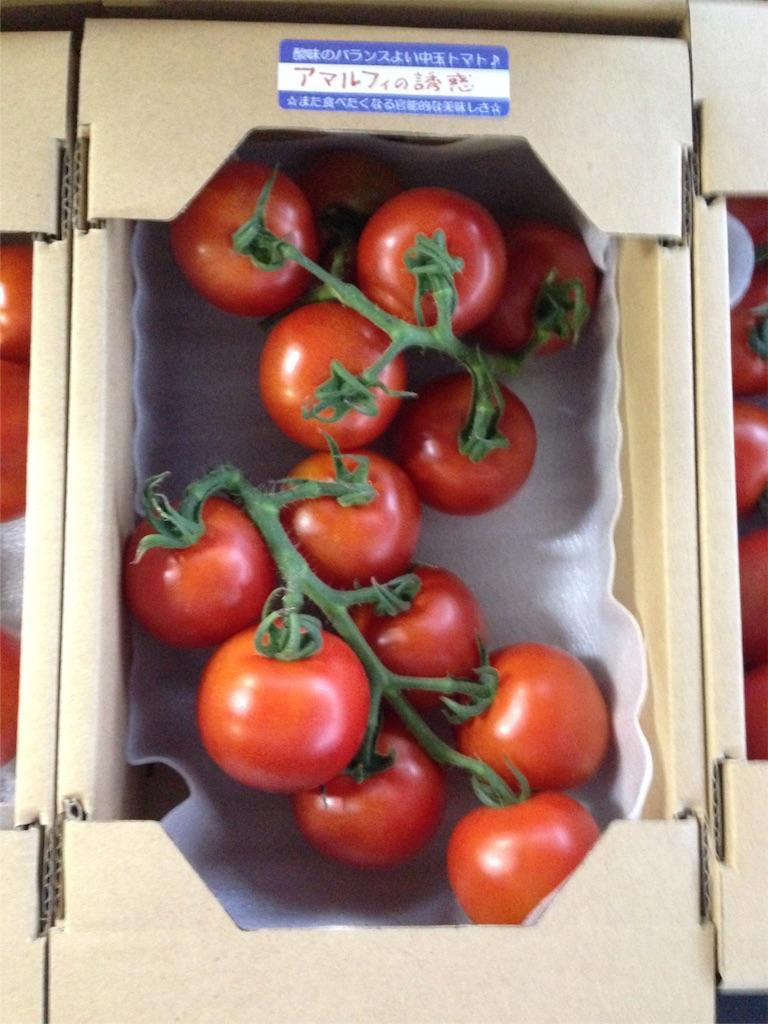 f:id:eri-tomato-oic2:20160817064008j:image