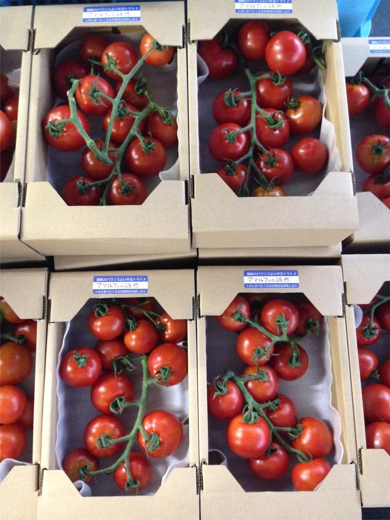 f:id:eri-tomato-oic2:20160817064025j:image