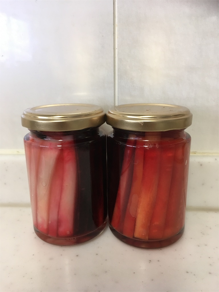 f:id:eri-tomato-oic2:20170113204456j:image