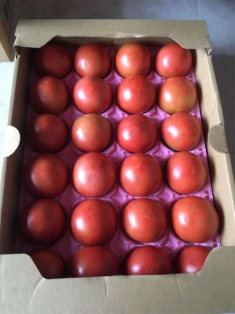 f:id:eri-tomato-oic2:20170718090315j:image
