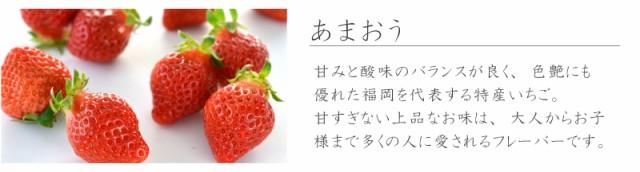 f:id:erika_yokouchi:20170224145907j:plain