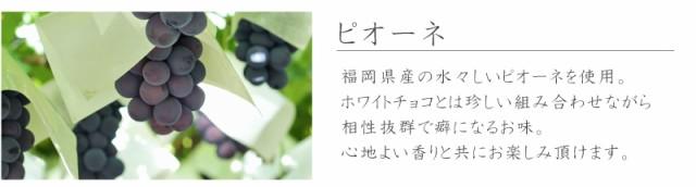 f:id:erika_yokouchi:20170224145917j:plain