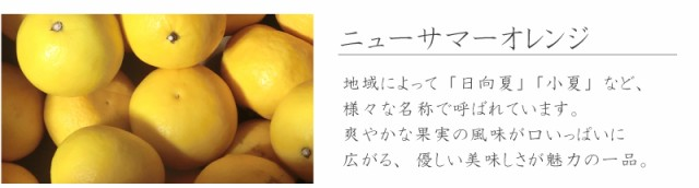 f:id:erika_yokouchi:20170224145930j:plain