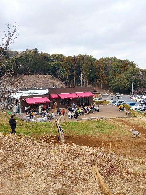 f:id:erinafugisawa:20190222103315j:image