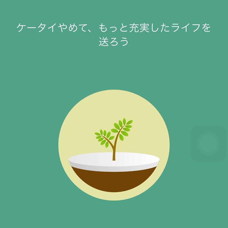 f:id:erincobiyori:20161203075037j:plain