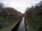 善福寺川は2〜3分咲き。来週末が見頃かな?