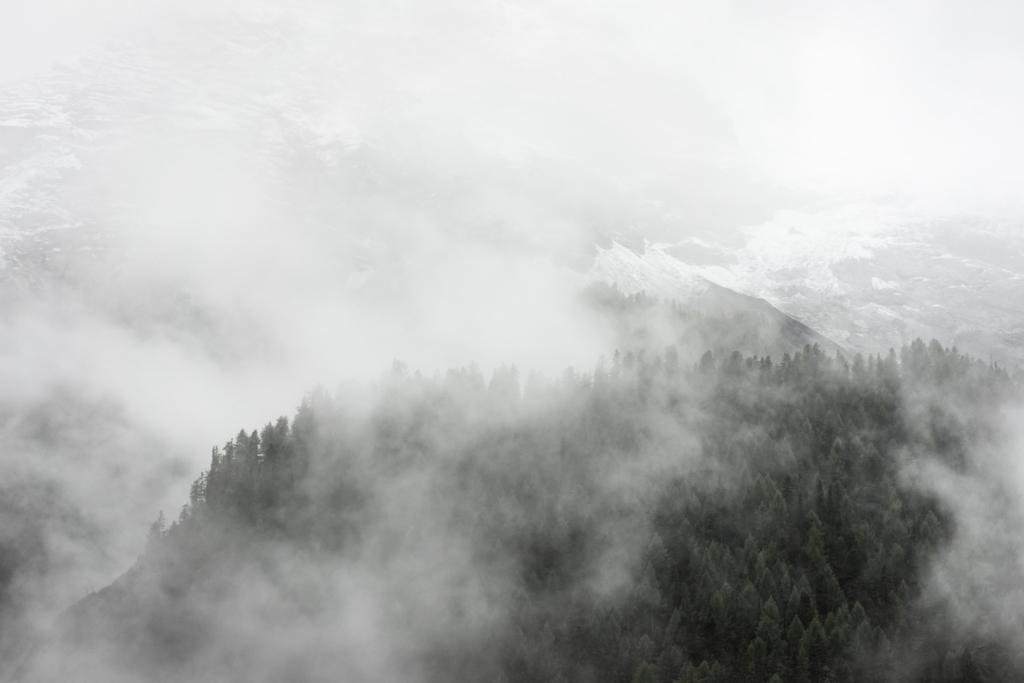 f:id:erumo0225:20171118001344j:plain