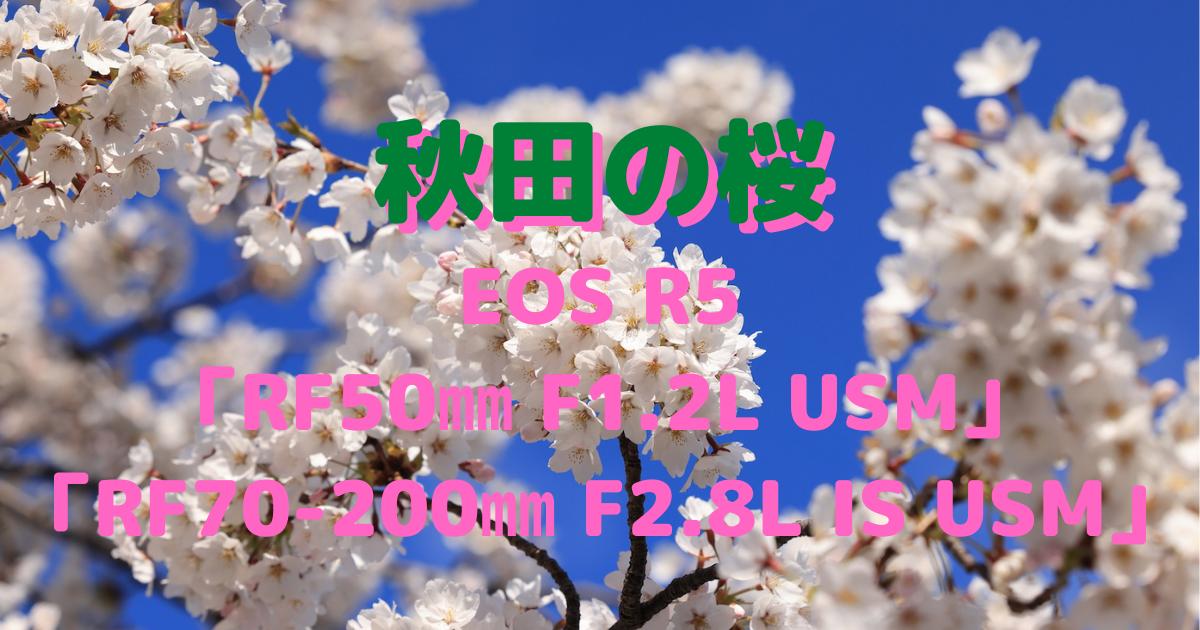 f:id:es60:20210411114859p:plain