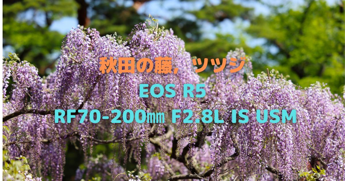 f:id:es60:20210516111406p:plain