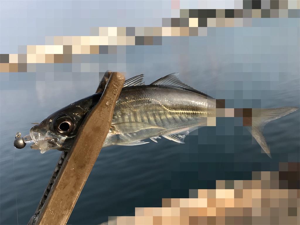 f:id:esojima3:20200202195135j:image