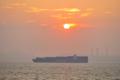 [AF-S VR 70-300mm F4.5-5.6G]大きなコンテナ船、後ろは久里浜